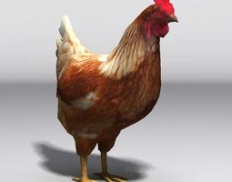 Lowpoly Hen 3D Model