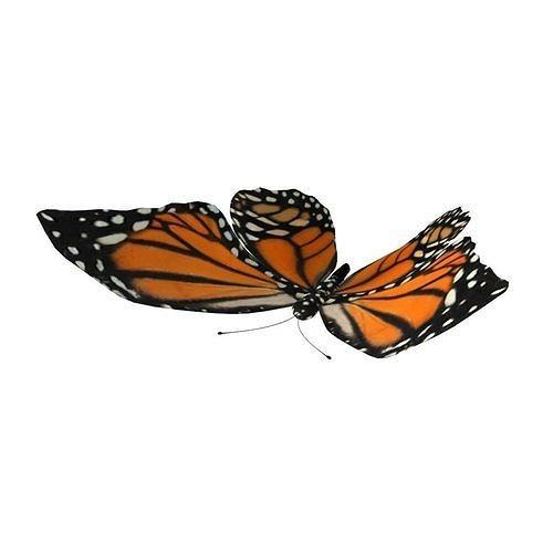 rig butterfly 3d model obj mtl fbx ma mb 1