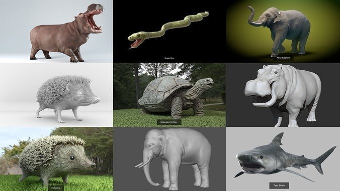 wild animals collections 3d model max obj mtl 3ds fbx c4d stl 1