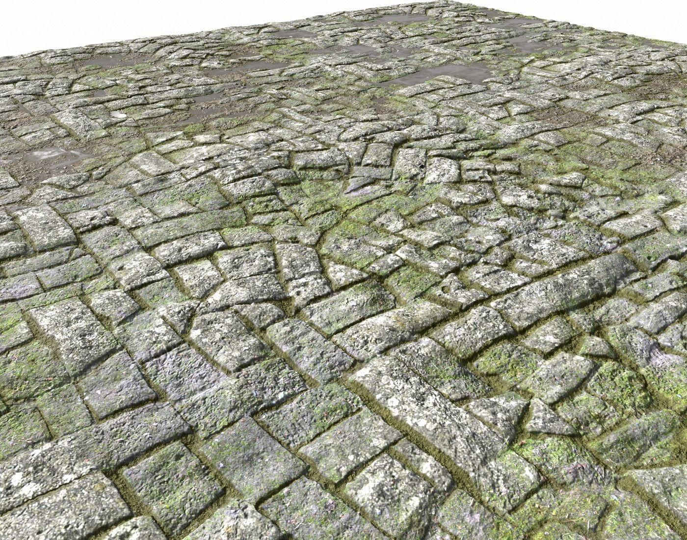 Old Mossy Floor Seamless PBR