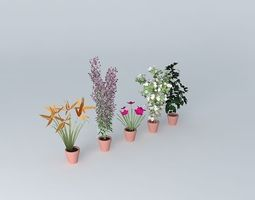 3D model Flowers 2