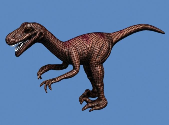 ... Pictures velociraptor 3d anatomy model 29 piece full skeleton model 3d