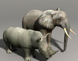 Elephant and Rhino 3D model
