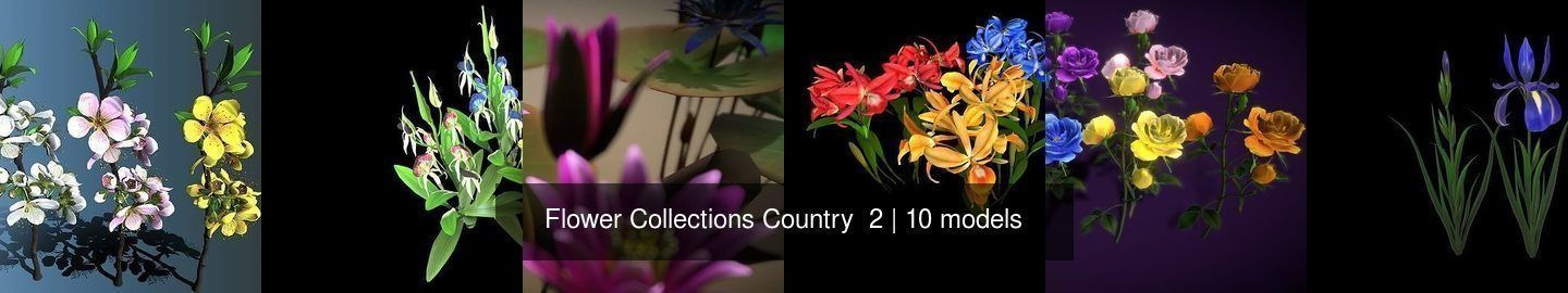 Flower Collections Country  2