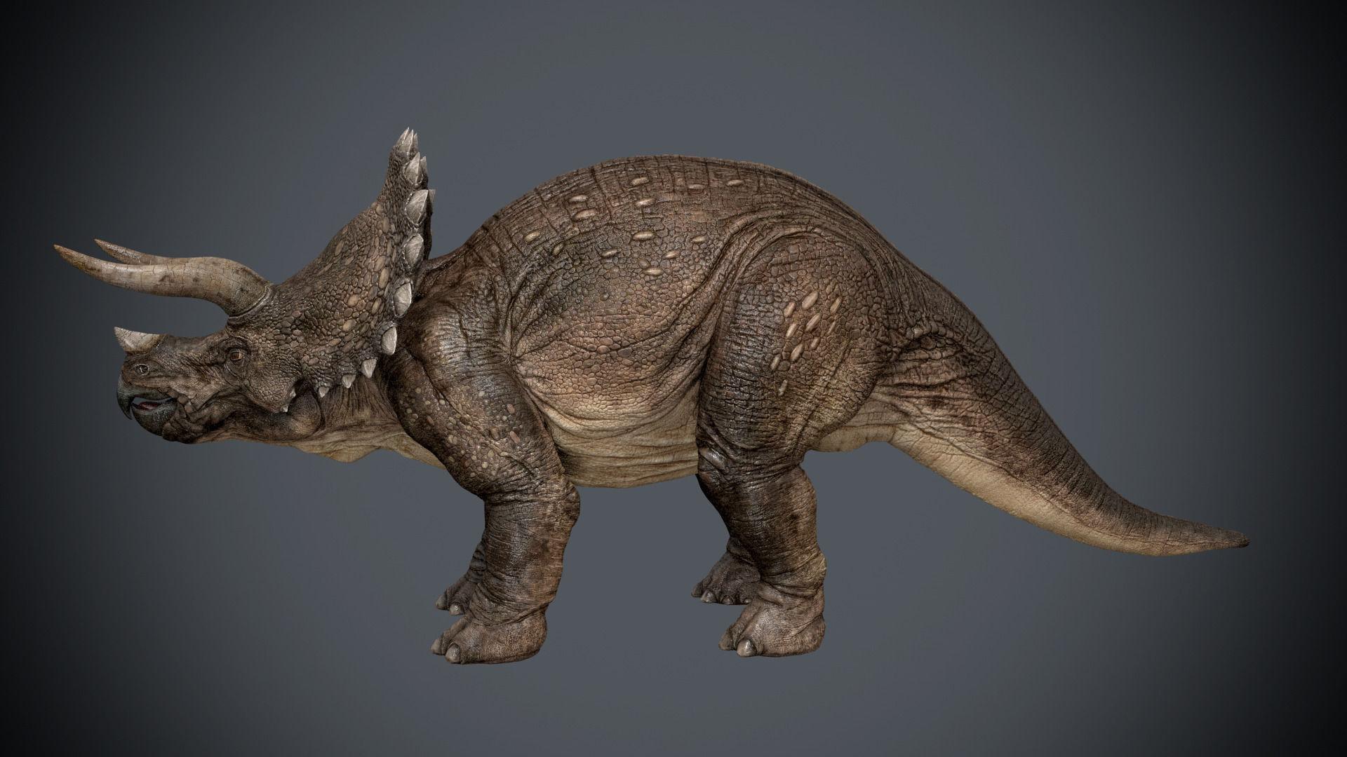 Triceratops-maya-Rigging
