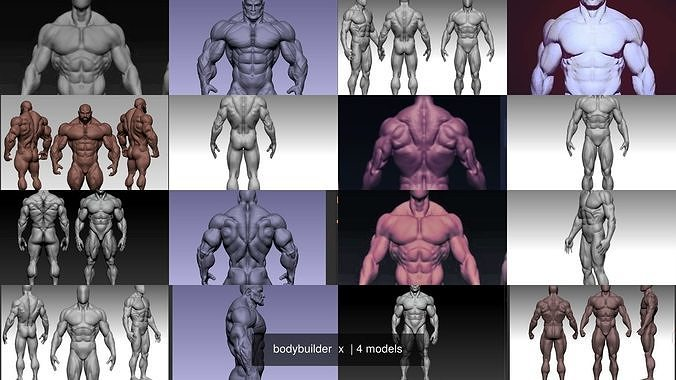 bodybuilder  x
