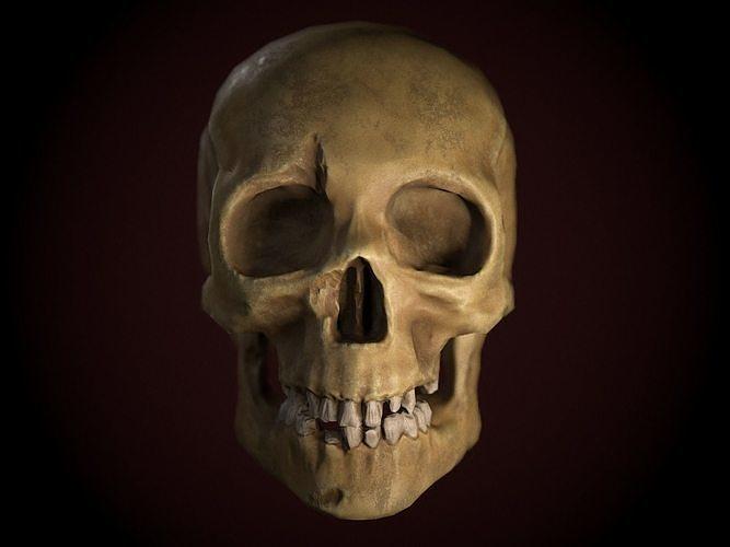 Dirty Skull PBR