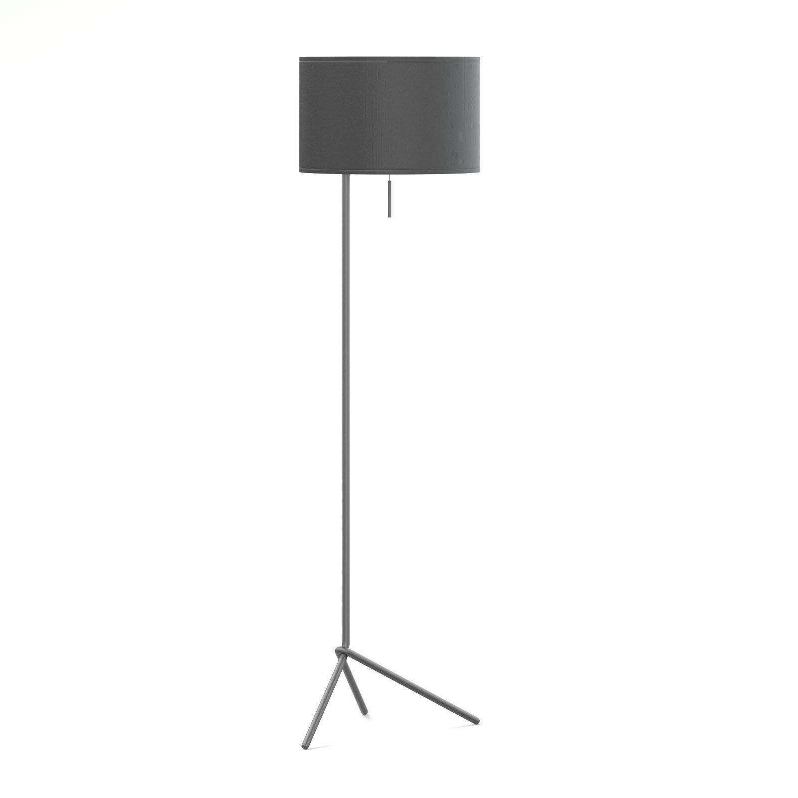 Black Floor Lamp 3D Model