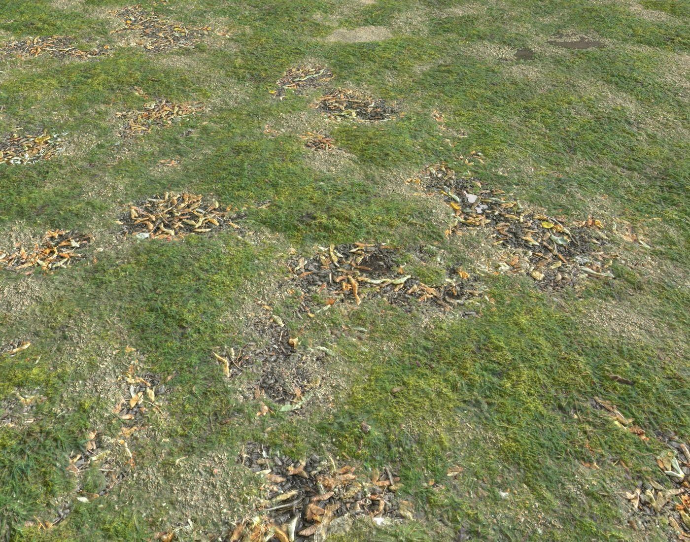 Grassy ground PBR