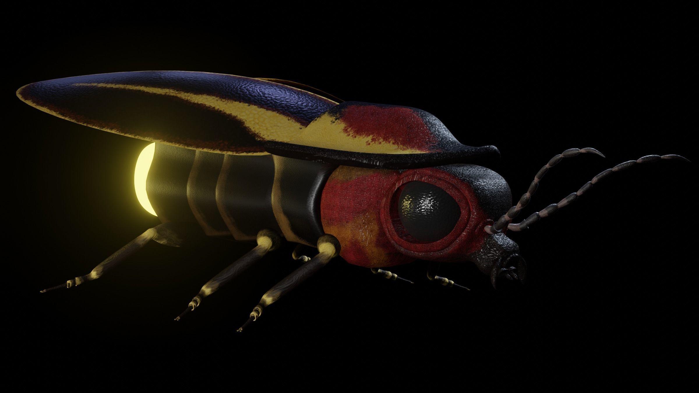 Firefly Realistic model