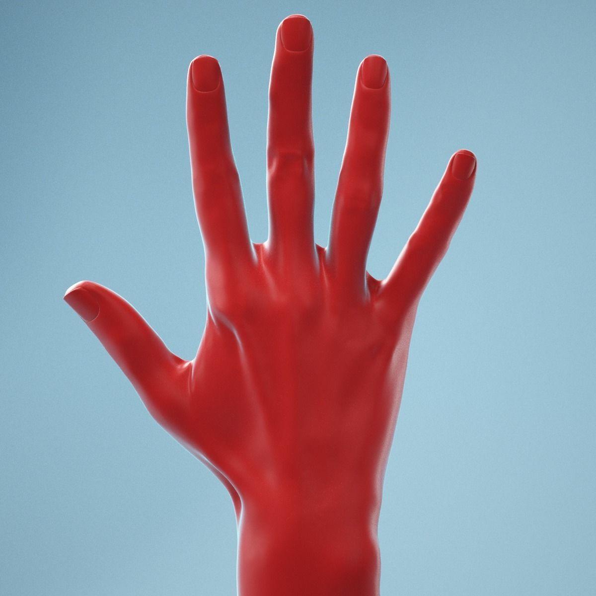 Standard Pose Realistic Hand Model 02