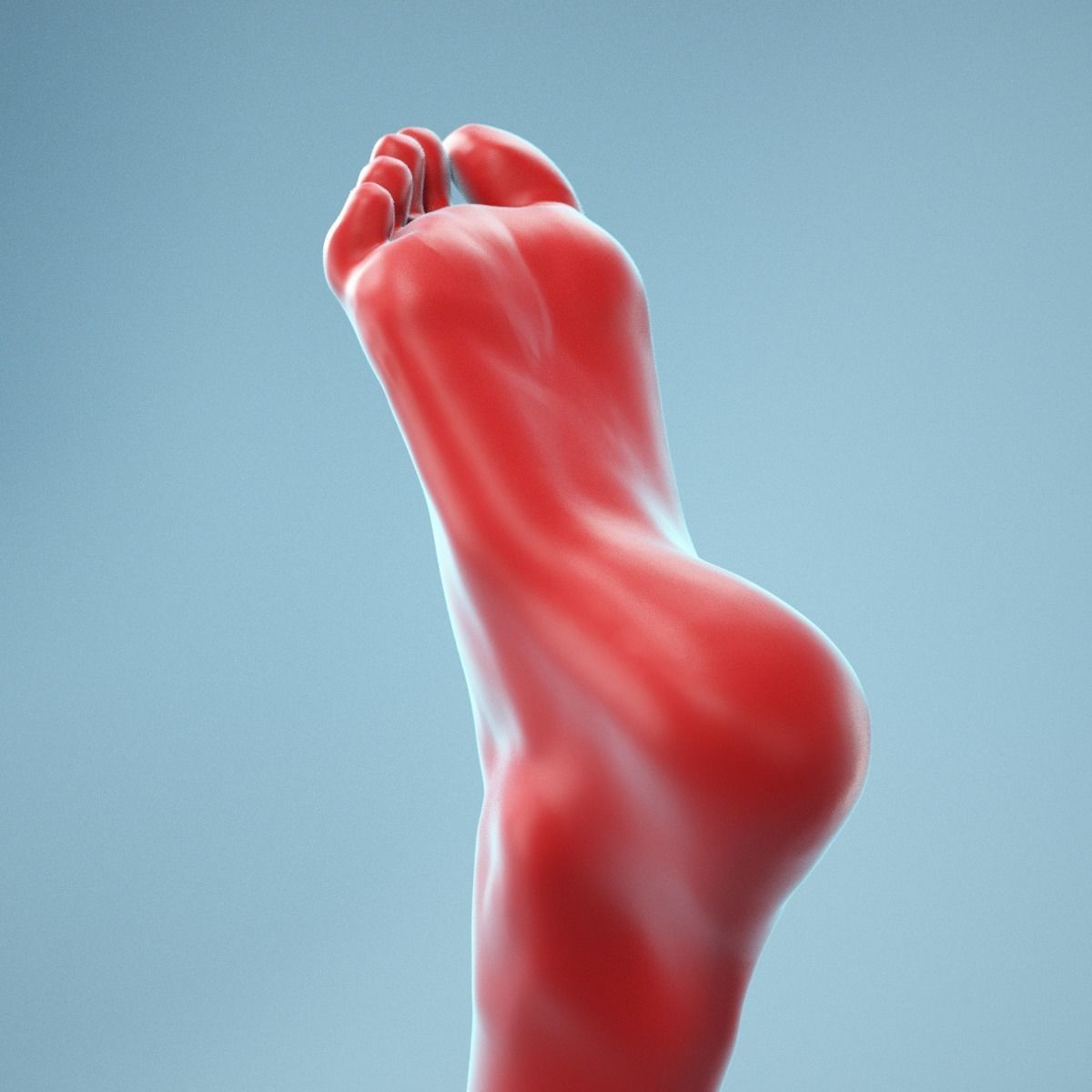 Neutral Pose Realistic Foot Model 01