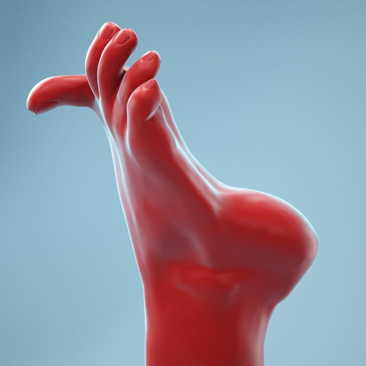 Big Toe Pointing Realistic Foot Model 07