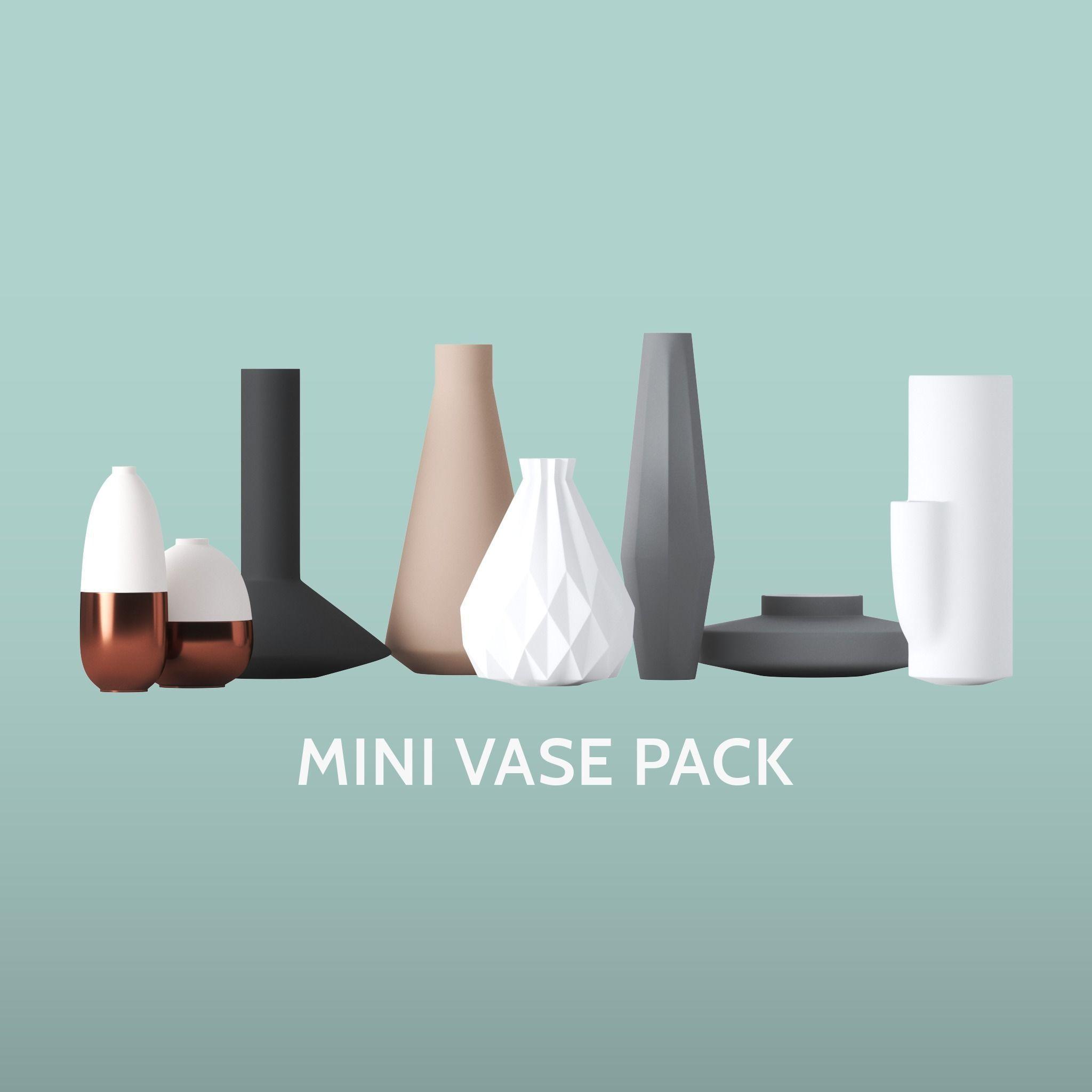 Mini Vase Pack