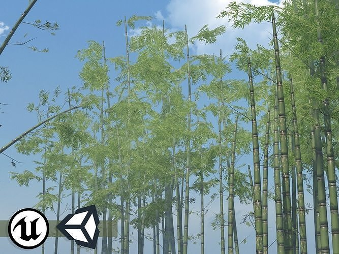 Nature Assets - Bamboo Pack