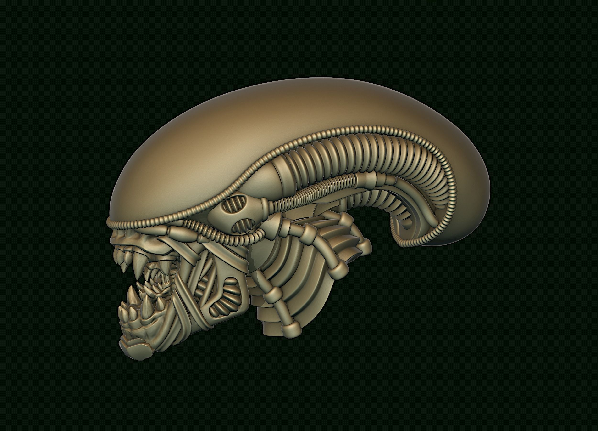 Xenomorph Alien biomechanical head
