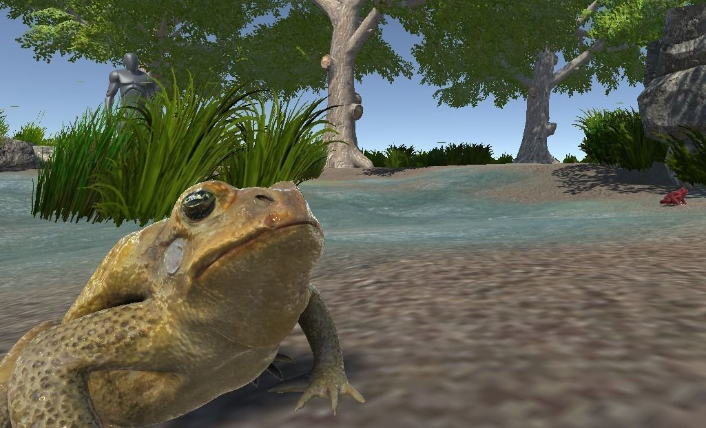 PBR Toad Animated