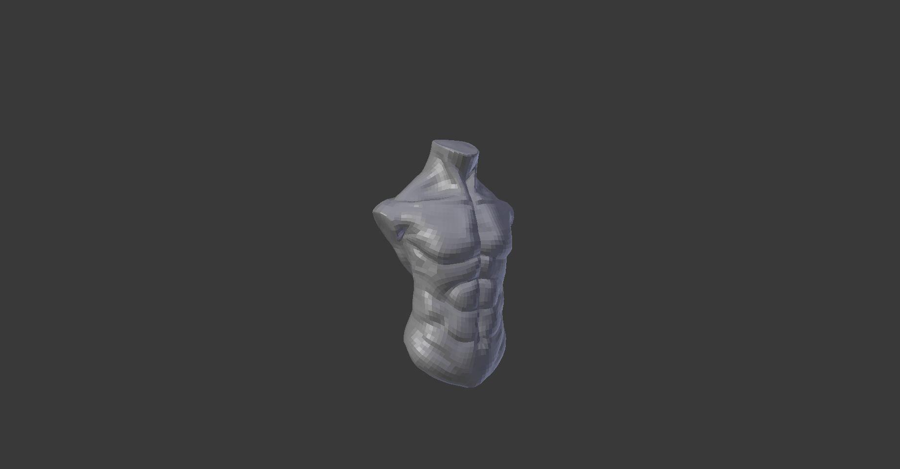 3D asset Human torso | CGTrader