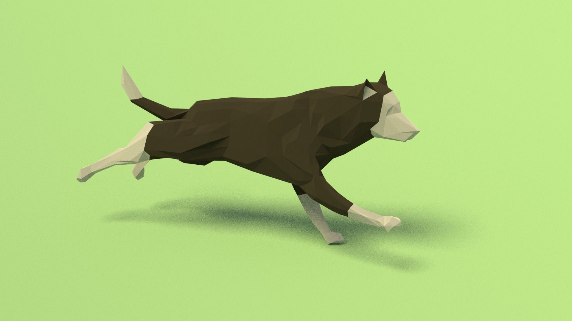 Rigged Low Poly Dog