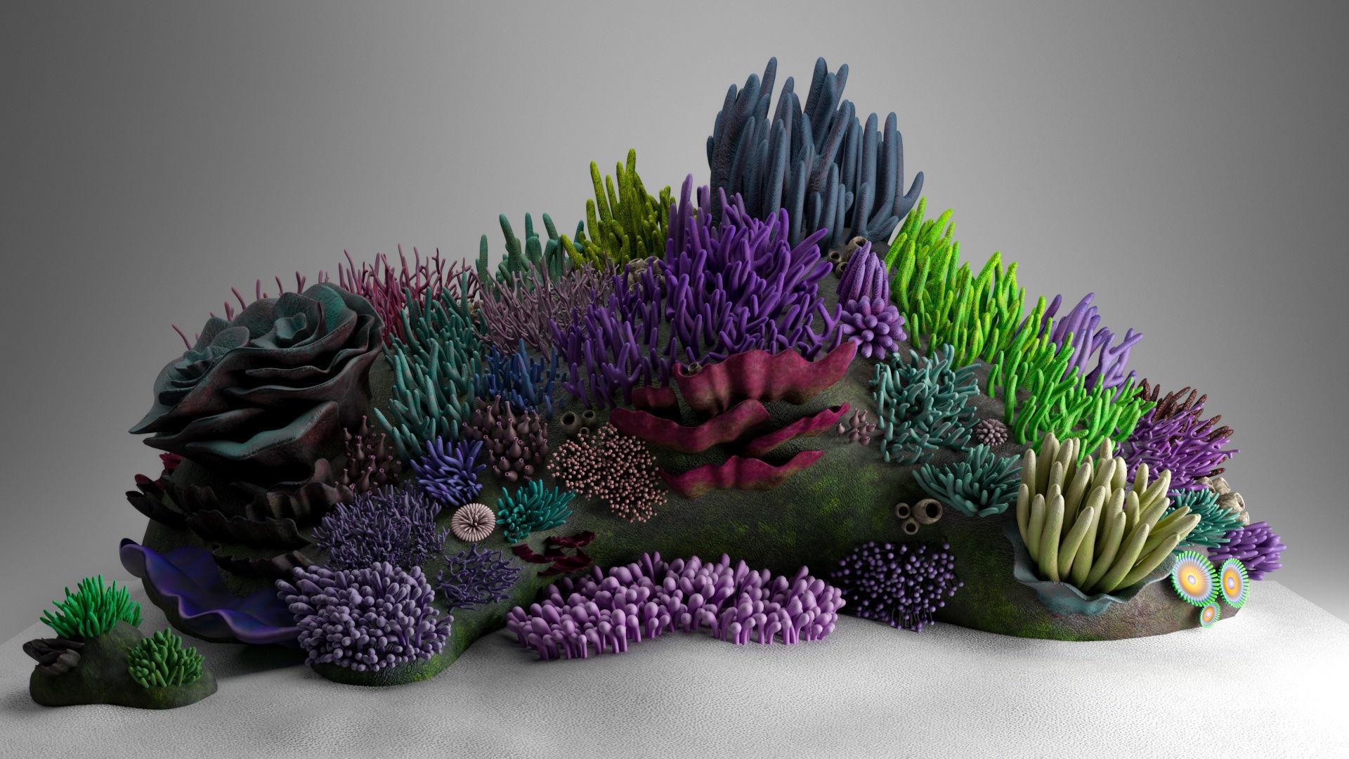 3D Underwater Coral Reef Habitat Ocean