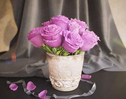 flowers in vase 3d