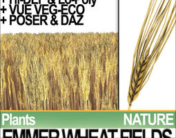 Emmer Wheat Fields Poser DAZ VFX Animation 3D Model