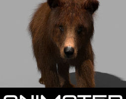 3D animated Wild Bear model animated 3d