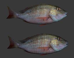 fishs 3d printable model