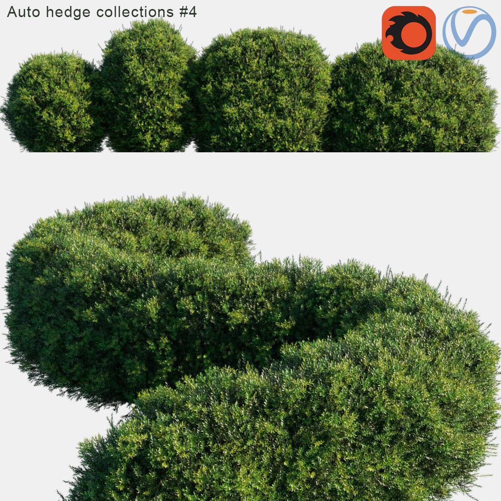 Auto hedge collections 4