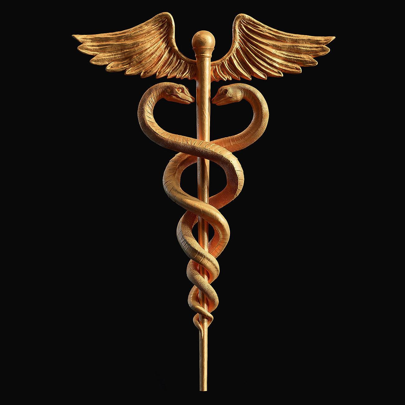 Caduceus Medical symbol 3d print model