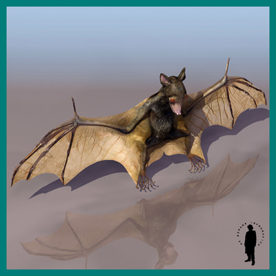 BAT HI RES 3D Model .max