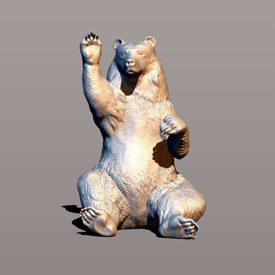 Bear waving paw