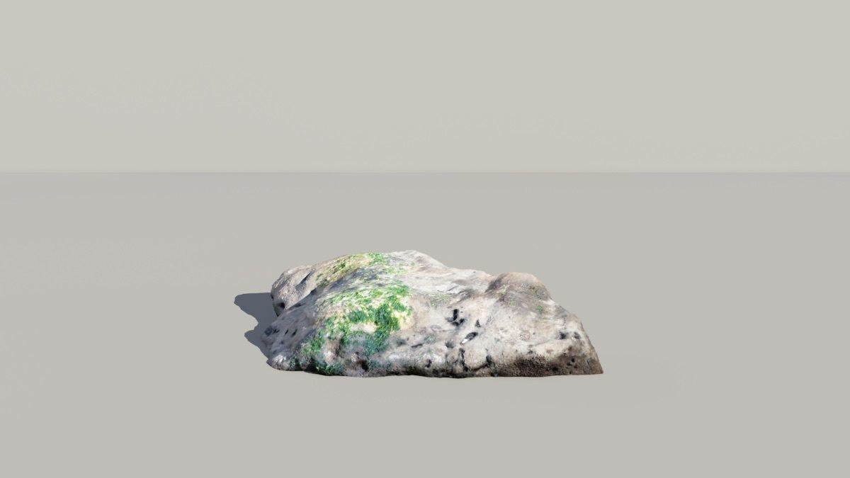 Mossy Fossil Rock 3D Scanned Model