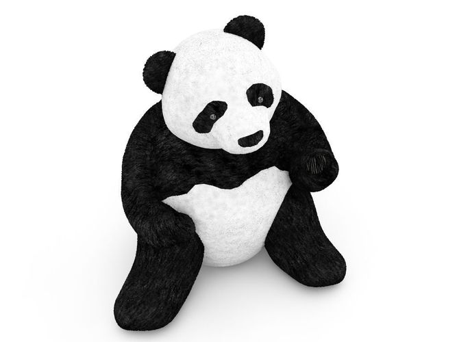 Pandra bear teen model