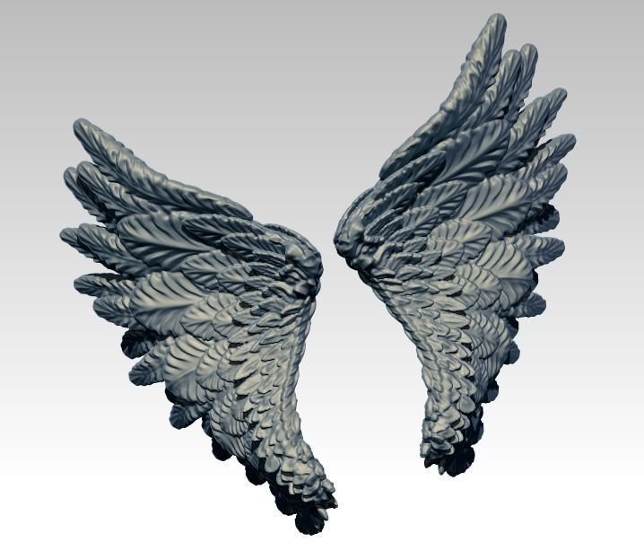 Angle Bird Wing High detailed
