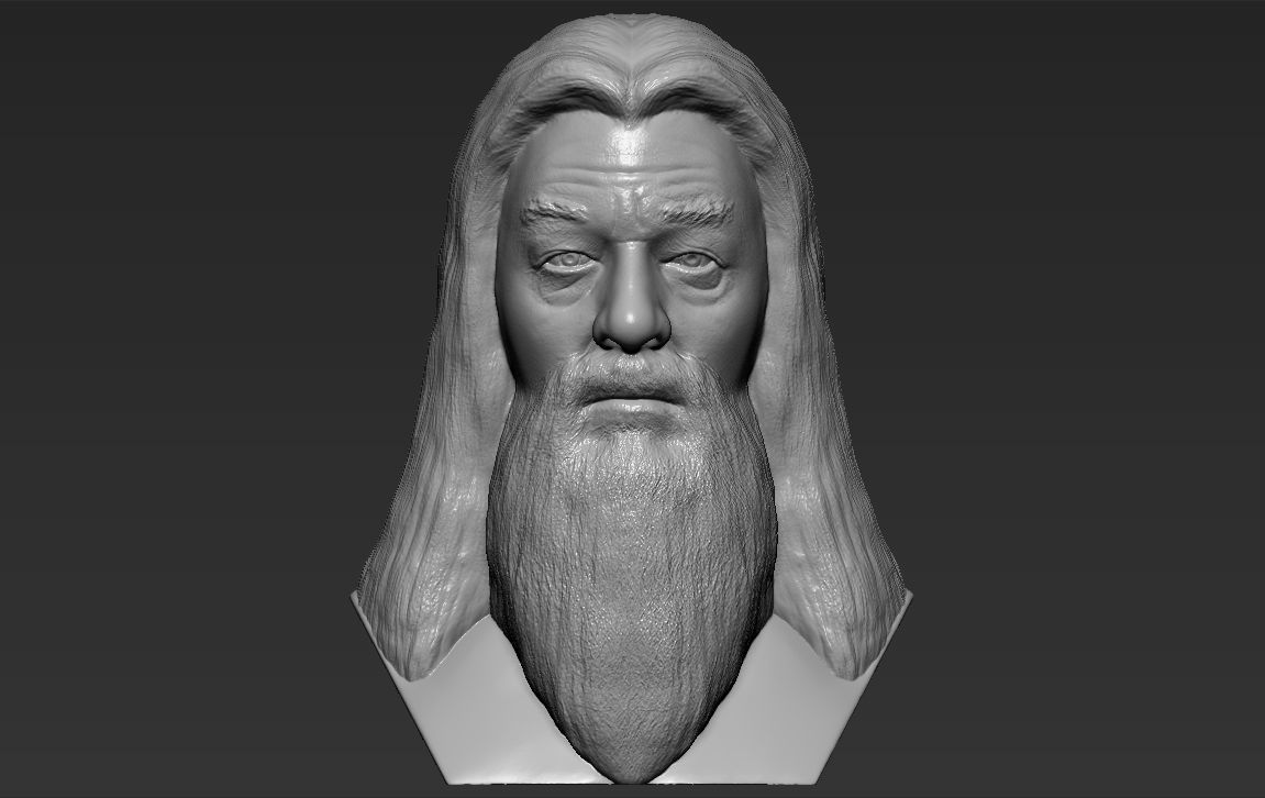 Dumbledore from Harry Potter bust 3D printing ready stl obj