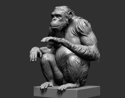 chimp 3d