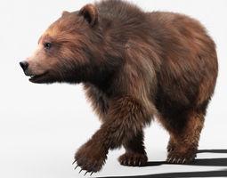 Brown Bear 2 FUR ANIMATED 3D Model