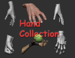 3D model Hand Collection