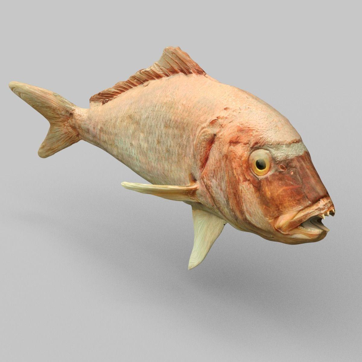 3d model prehistoric fish vr ar low poly obj for Virtual reality fishing