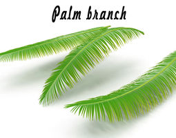 3D Palm branch