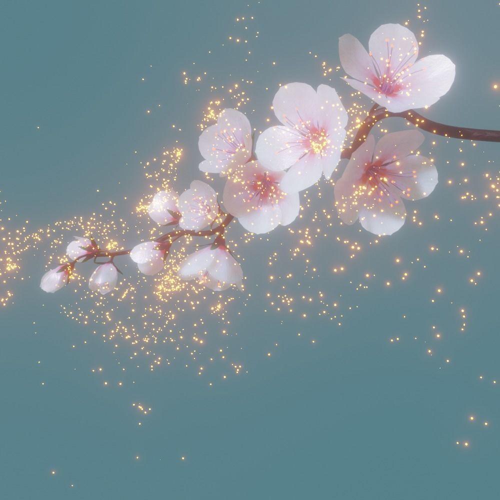 cherry blossom branch animation
