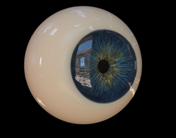 Eye 3D Models   CGTrader