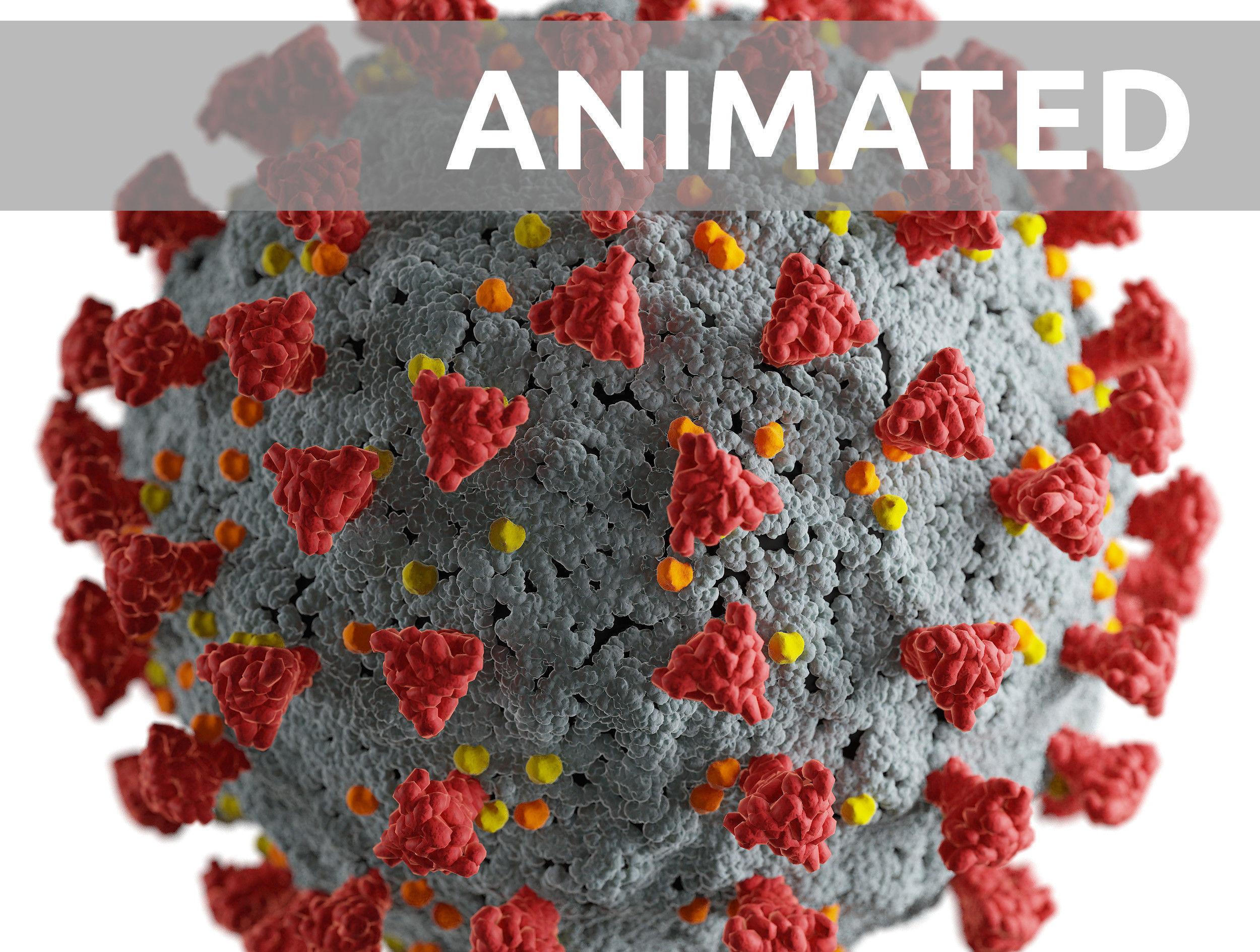 Corona virus -animated-