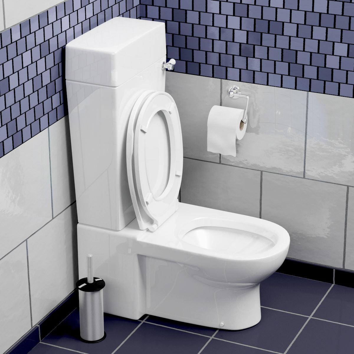 toilet 3d model max obj fbx. Black Bedroom Furniture Sets. Home Design Ideas