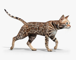 Bengal cat ANIMATED 3D Model