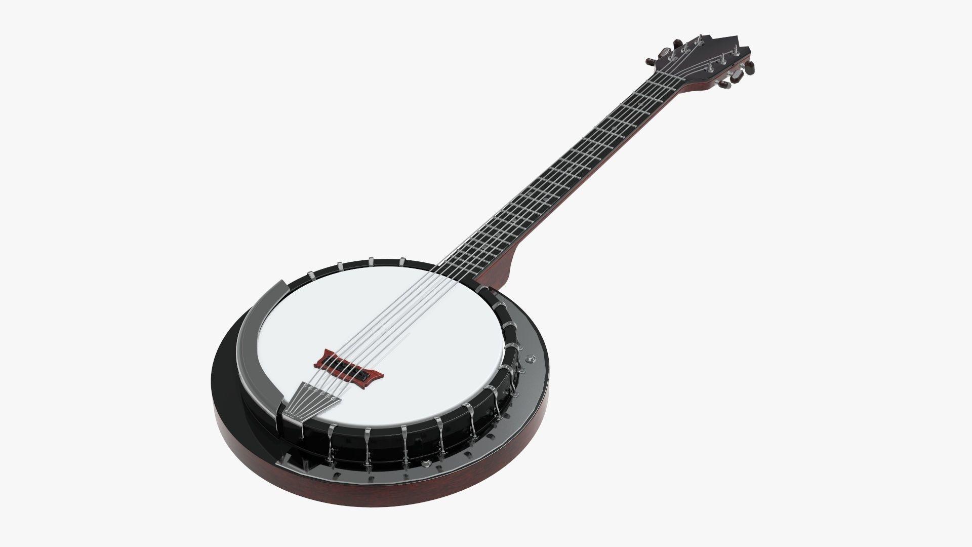 Banjo stringed musical instrument