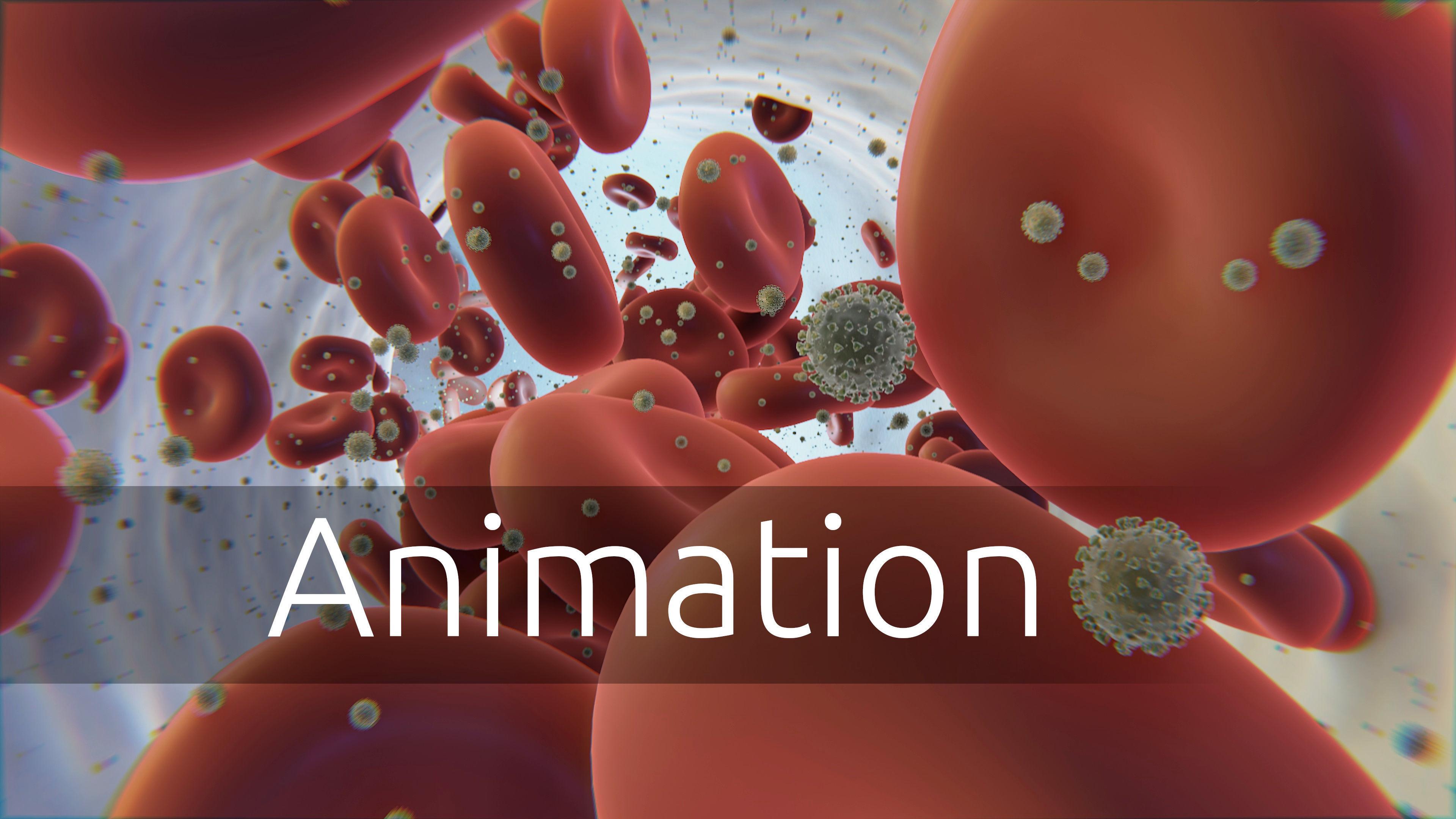 coronavirus - animated - blood flow