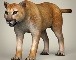3d asset low poly realistic mountain lion VR / AR ready