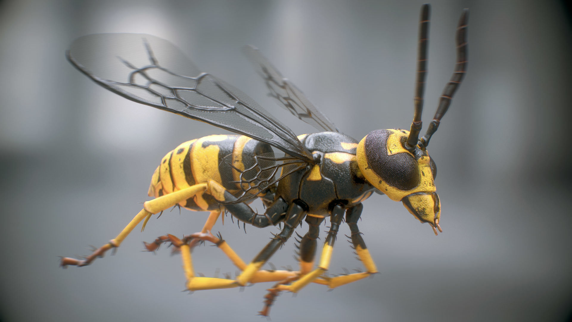 Wasp rigged PBR